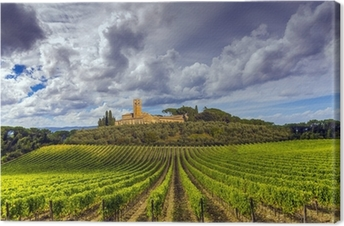 Cuadro en Lienzo Viñedos en la región de Chianti, en la Toscana, Italia
