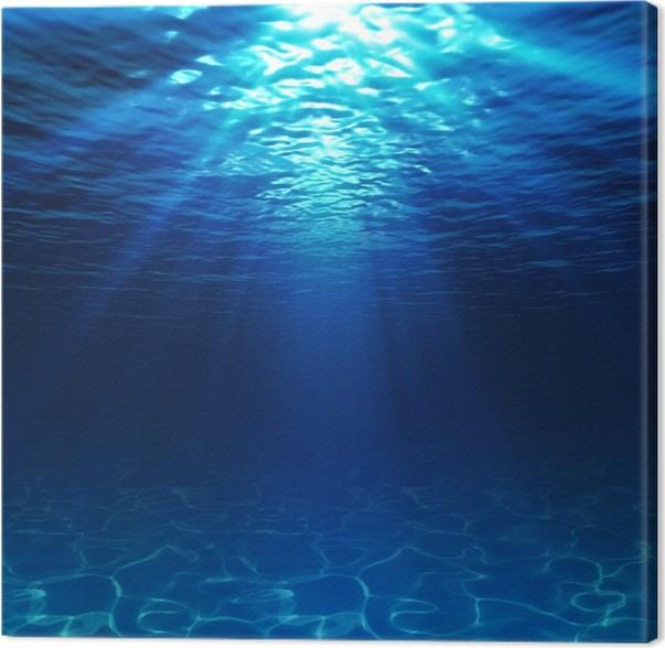 Cuadro en Lienzo Vista bajo el agua con fondo de arena • Pixers ...