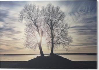 Cuadro en PVC Siluetas de árboles gemelos en una orilla del río al atardecer, color de imagen en tonos.