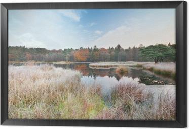 Cuadro Enmarcado Mañana helada en el lago en otoño