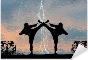 Pixerstick Dekor Karatethunder