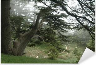 Pixerstick Dekor Les Cedres - el arz (Liban)