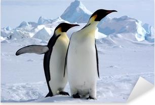 Pixerstick Dekor Mais où est le pôle sud? (Manchots Empereurs / Antarctique)