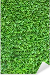 Pixerstick Dekor Murgröna Vägg vertikal