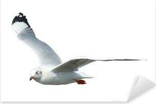 Pixerstick Dekor Seagull isolerat på vit