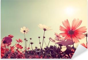 Pixerstick Dekor Vintage liggande natur bakgrund av vackra kosmos blomma fält på himlen med solljus. retro färgton filtereffekten