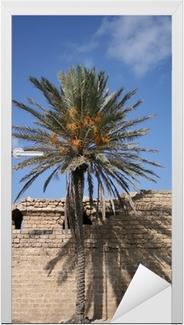 Deursticker Ombre et palmier