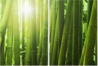 Díptico Bamboo forest