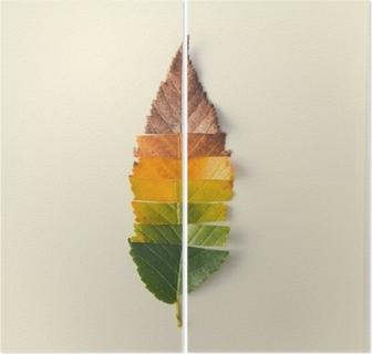 Díptico Layout criativo de folhas de outono coloridas.