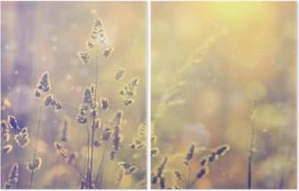 Díptico Retro turva gramado de grama no por do sol com alargamento. efeito de filtro Vintage roxo e amarelo cor de laranja utilizado. foco seletivo usado.