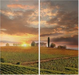 Chianti vineyard landscape in Tuscany, Italy Diptych