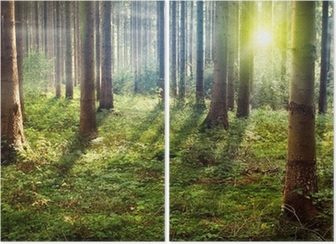 Forest Sunset Diptych