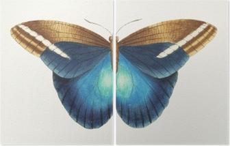 Illustration of animal artwork Diptych