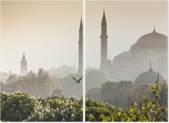 Sultanahmet Camii / Blue Mosque, Istanbul, Turkey Diptych
