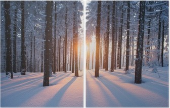 Sunset in the woods in winter Diptych