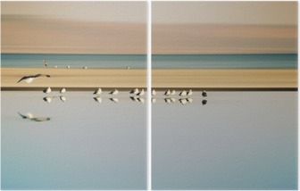 Vogelschwarm in Reihe / Ein kleiner Vogelschwarm in Reihe stehender Möwen einer Brutkolonie am Saltonsee in Kalifornien. Diptych