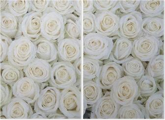 Diptychon Gruppe von weißen Rosen nach einer Regendusche
