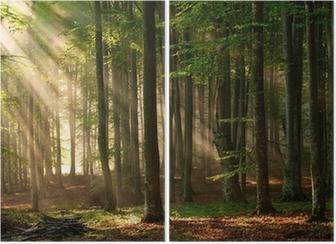 Diptychon Sonnenstrahlen durchbohren den Wald