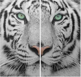 Diptychon Weiße tiger