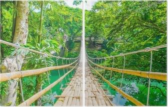 Diptych Pěší pozastavení Bamboo most přes řeku