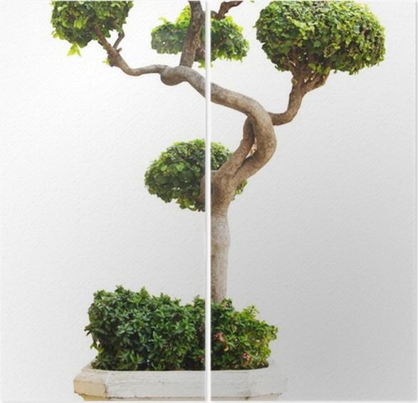 Diptyque Arbre décoratif ornemental • Pixers® - Nous vivons pour on