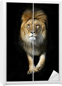 Dolap Çıkartması Bir kefen içinde aslan