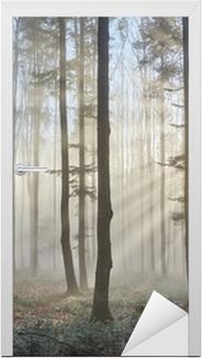 Sun rays through the foggy forest Door Sticker
