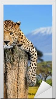 Dørklistremerke Leopard