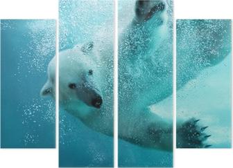 Dört Parçalı Kutup ayısı sualtı saldırı