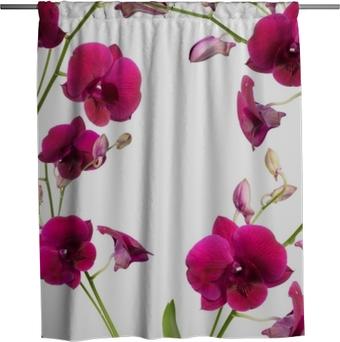 Duschvorhang Schöner purpurroter Orchideenblumenrahmen lokalisiert auf weißem Hintergrund