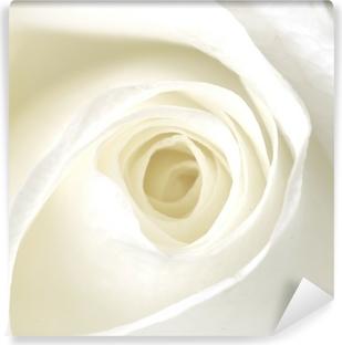 Vinil Duvar Resmi Beyaz gül