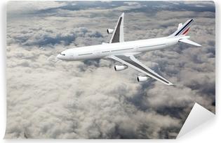 Vinil Duvar Resmi Gökyüzünde uçak
