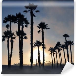 Vinil Duvar Resmi Gün batımı ve palmiye ağaçları, Santa Monica plajı, Los Angeles, ABD