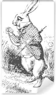 Vinil Duvar Resmi Izle Alice in Wonderland Beyaz Tavşan