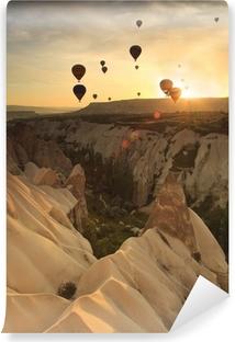 Vinil Duvar Resmi Kapadokya, Türkiye'de kaya oluşumları üzerinde sıcak hava balonu