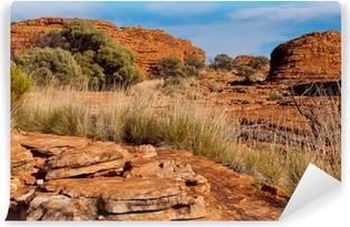 Vinil Duvar Resmi Kings Canyon manzara, Northern Territory, Australia8