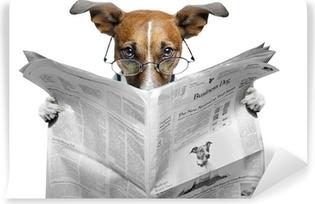 Vinil Duvar Resmi Köpek gazete okurken