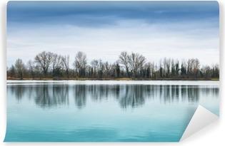 Vinil Duvar Resmi Panorama lacustre