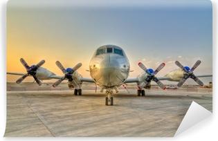 Vinil Duvar Resmi Pervane uçaklar