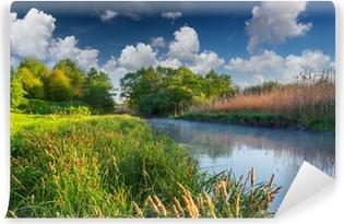 Vinil Duvar Resmi Puslu Nehri üzerinde renkli bahar manzara