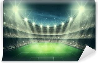 Vinil Duvar Resmi Stadium Işık