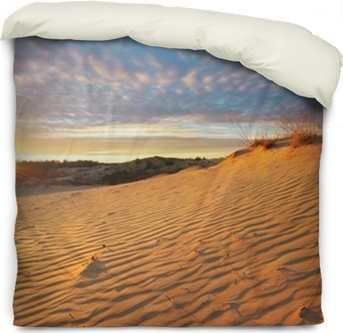 Beautiful Landscape In Desert Wall Mural Pixers We Live To Change