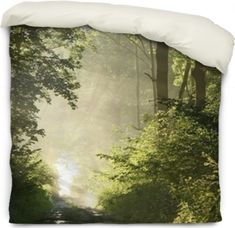 Forest Trail On A Foggy Spring Morning After The Rain Duvet Cover Pixers We Live To Change