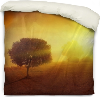 Landscape With Lonely Tree At Sunset Wall Mural Pixers We Live To Change