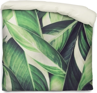 Federa per piumoni Sfondo di foglie verdi tropicali freschi