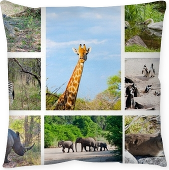 African Wild Animals Collage Fauna In Kruger Park South Africa Canvas Print O PixersR We Live To Change