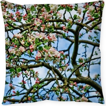 Blooming Apple Tree Wallpaper Background Wall Mural O PixersR We Live To Change