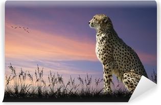 Vinyl Fotobehang Afrikaanse safari concept beeld van cheetah uitkijkend over savannn