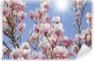 Vinyl Fotobehang Blauwe hemel met magnolia bloesem