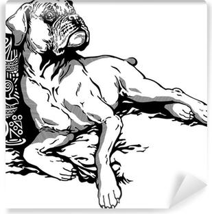 Vinyl Fotobehang Boxer zwart wit